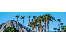 5 Reasons Why People Love Palm Springs, California