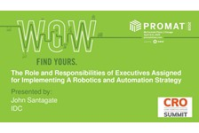 The Role and Responsibilities of Executives Assigned for Implementing a Robotics and Automation Strategy